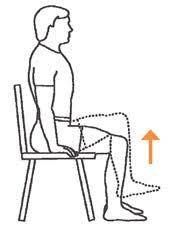 عضله خم کننده ران