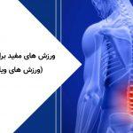 ورزش های مفید برای کمر درد (ورزش های ویلیامز)